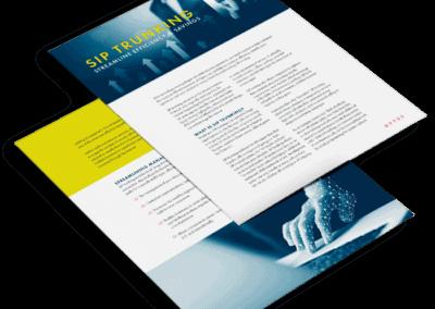 SIP Trunking: Streamline Efficiency & Savings